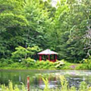 Garden With Pond Art Print