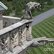Gargoyles On Roof Of Biltmore Estate Art Print