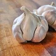 Garlic Cloves Art Print