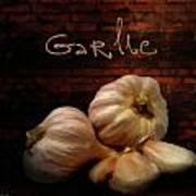 Garlic II Art Print