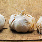 Garlic On Old Barrel Board Art Print