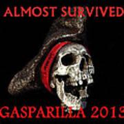 Gasparilla 2013 Postertshirt Work B Art Print