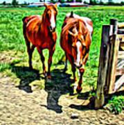 Gate Horse Art Print