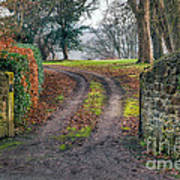 Gateway To Autumn Art Print