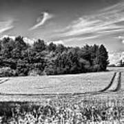Gathering The Crop To Thaxted Mill Art Print
