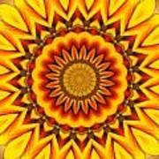 Gazania Kaleidoscope Art Print