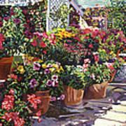 Gazebo Garden Art Print