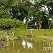 Gazebo Trees Lake And Rock Garden In Singapore Chinese Gardens Art Print