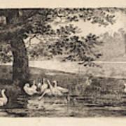 Geese At Water, Elias Stark Art Print