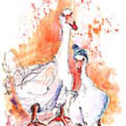 Geese In Spanish Winter Art Print