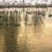 Geese On Golden Pond Art Print