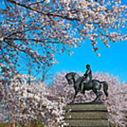 General In The Cherry Blossoms Art Print