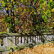 Genesee Valley Park Art Print
