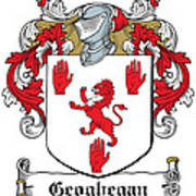 Geoghegan Coat Of Arms Westmeath Ireland Art Print