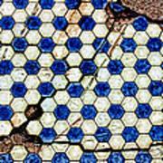 Geographic Tile Art Print