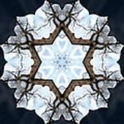 Geometry Tree Art Print