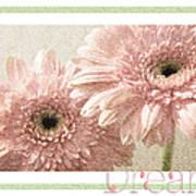 Gerber Daisy Dream 3 Art Print