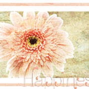 Gerber Daisy Happiness 1 Art Print