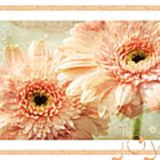 Gerber Daisy Joy 2 Art Print