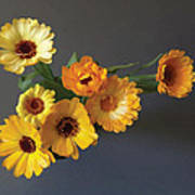 Gerbera bouquet Art Print