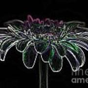 Gerbera Glow 4 Art Print