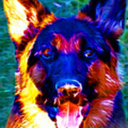 German Shepard - Electric Print by Wingsdomain Art and Photography
