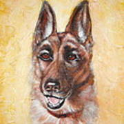 German Shepard Portrait Lala Art Print