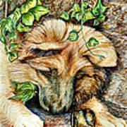 German Shepherd Pup Art Print by Joy Reese