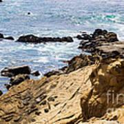 Gerstle Coastline Art Print