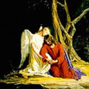 Gethsemane Art Print