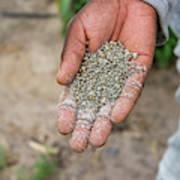 Ghanzi, Botswana- Fertilizer Pellets Art Print