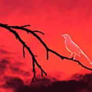 Ghost Bird Art Print