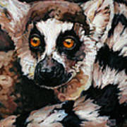 Ghost Of Madagascar Art Print