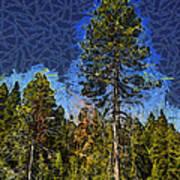 Giant Abstract Tree Art Print