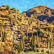 Giant Cordon Cactus Art Print