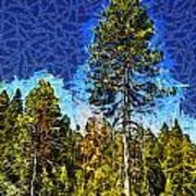 Giant Tree Abstract Art Print