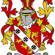 Gibbons Coat Of Arms Irish Art Print