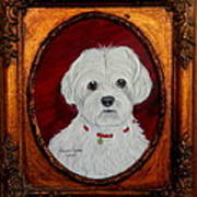 Gidget.my Maltese Art Print