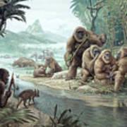 Gigantopithecus With Homo Erectus Art Print