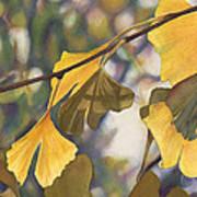 Ginkgo Gold Art Print