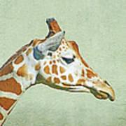 Giraffe Mug Shot Art Print