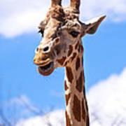 Giraffe Speak Art Print