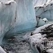 Glacial Waters Art Print