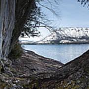 Glacier Park View Art Print