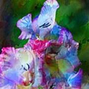 Gladiolus Floral Art Art Print