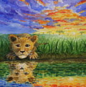 Glancing In The Water Art Print