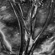 Glass Ceiling Art Print
