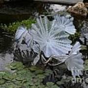 Glass Flowers Art Print