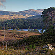 Glen Affric Panorama II Art Print