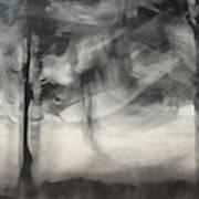 Glimpse Of Coastal Pines Art Print by Carol Leigh